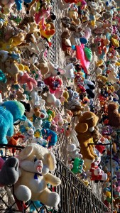 Peluches Art installation by Caterina Borghi